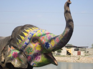 Joyful Elephant