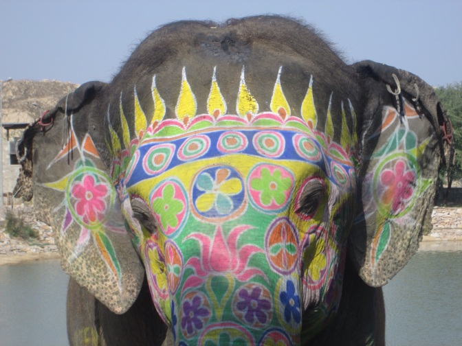Elephant Village, Jaipur, Rajastan